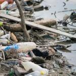 Se curata raurile din Caransebes