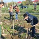 Viitorul, la umbra a 200 de arbori