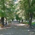 Parcul Teius este pus in valoare