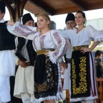Academie de folclor la Caransebes?