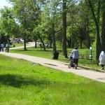 Mediul urban nu poate respira fara spatii verzi