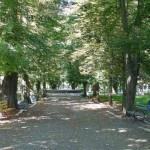 Parcul Teius pentru viitor