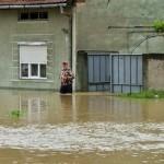 Vor sa devieze paraul ce inunda orasul