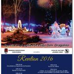 Programul de Revelion