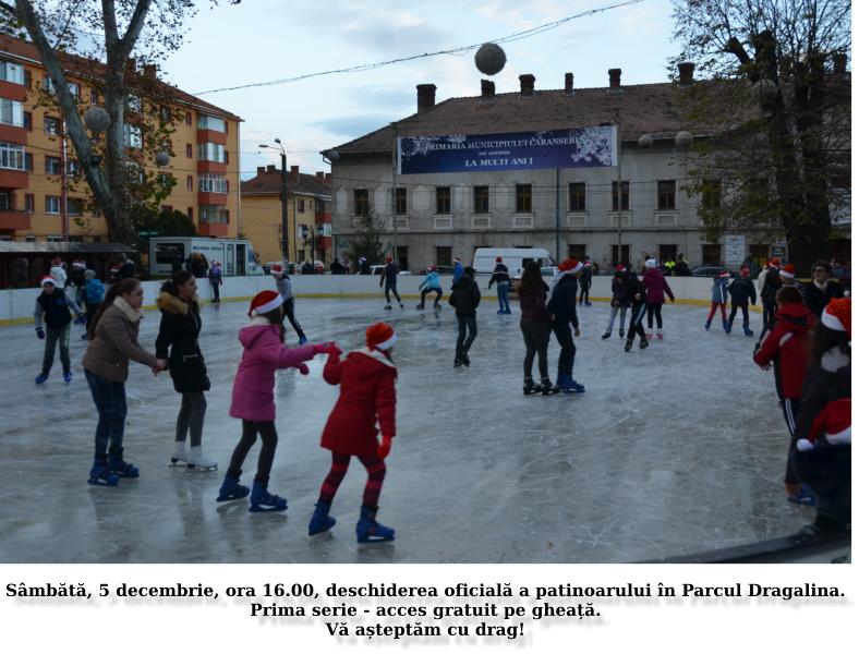 patinoar2015