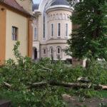 Furtuna la Caransebes: copaci rupti, strazi inundate, acoperisuri distruse