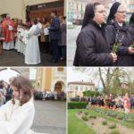 Procesiune de Floriile catolice la Caransebeș